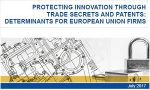 Protecting Innovation through Trade Secrets and Patents: Determinants for European Union Firms